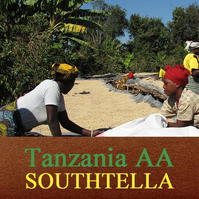 タンザニア AA