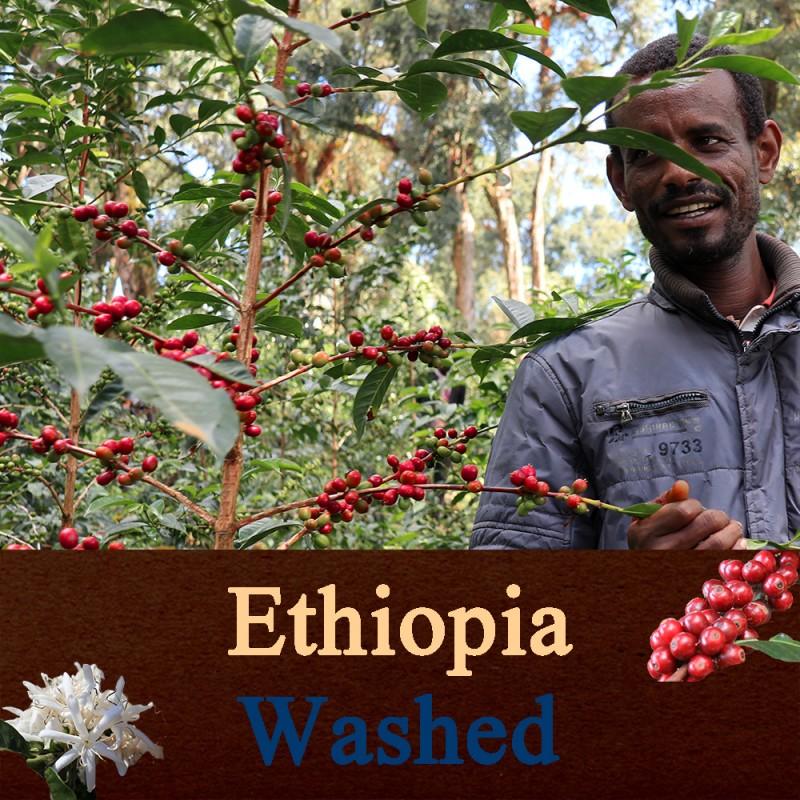 エチオピア W