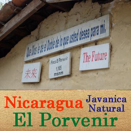 【中煎り】ニカラグア・ジャバニカ・ナチュラル