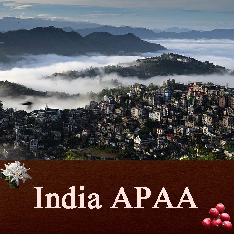 インディア APAA